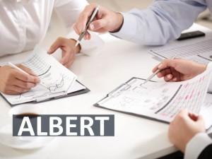 Problemlöseschema ALBERT